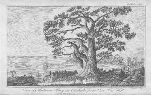 An engraving of Matavai Bay, Tahiti showing Captain Cook's bark Endeavour anchored near Fort Venus, the site from which he observed the Transit of Venus in 1769.